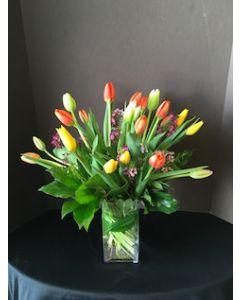 Two Dozen Tulips