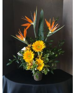 Bird of Paradise and Gerbera Daisies