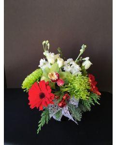 Christmas Flowers of Greens