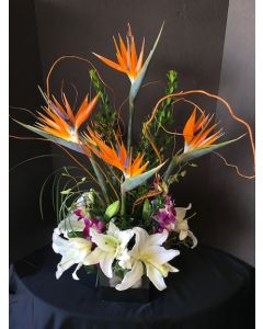 Tropical Flowers with Bird of Paradise
