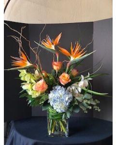 Tropical Valentine's Day Flowers with Orchids, bird of paradise and hydrangea