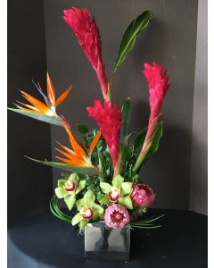 Tropical Flowers with Protea